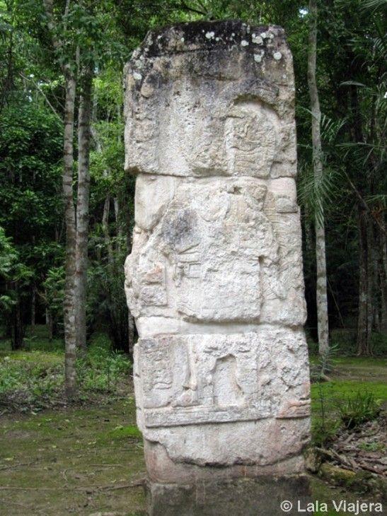 Estela maya en Calakmul