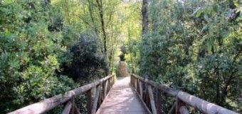 Sendero botanico por la Sierra de Hornachuelos