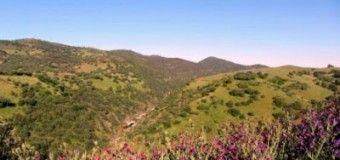 Ecoturismo en Sierra Morena