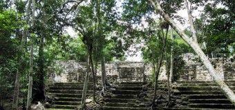 Ruta Maya: Calakmul, Reserva de la Biosfera