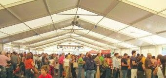 Consejos para disfrutar en la Feria del Marisco y no morir en el intento