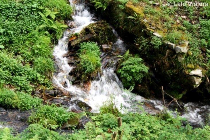 Reserva de la Biosfera del Eo, Valle del Turia, Asturias