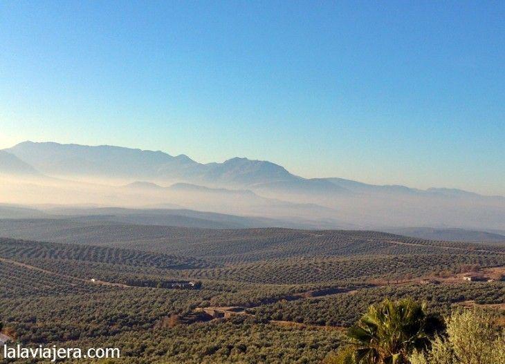 El mar de Olivos de Jaén y los Cerros de Úbeda
