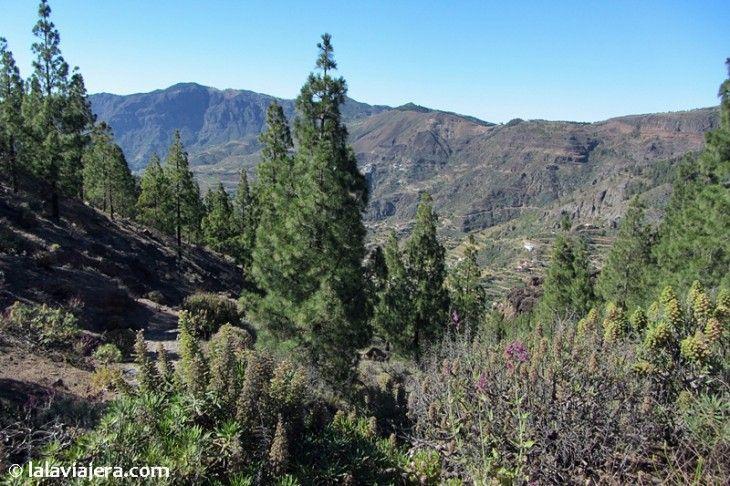 Mirador del Roque Nublo, Gran Canaria