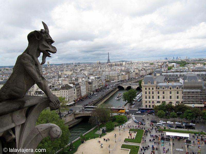 París desde la Torre de la Catedral de Notre Dame