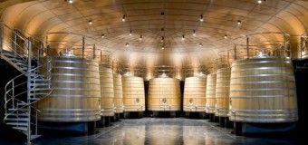 Vivanco: 5 planes turísticos entre arte y viñedos