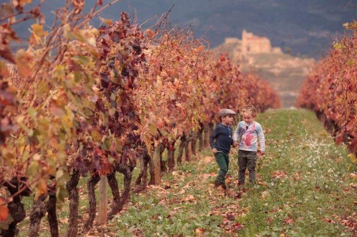 Enoturismo en familia, La Rioja