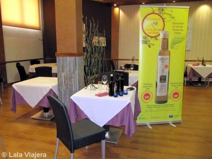 Cata de aceites de oliva virgen con D.O. Terra Alta en el Restaurante Nou Moderno de Vilalba dels Arcs