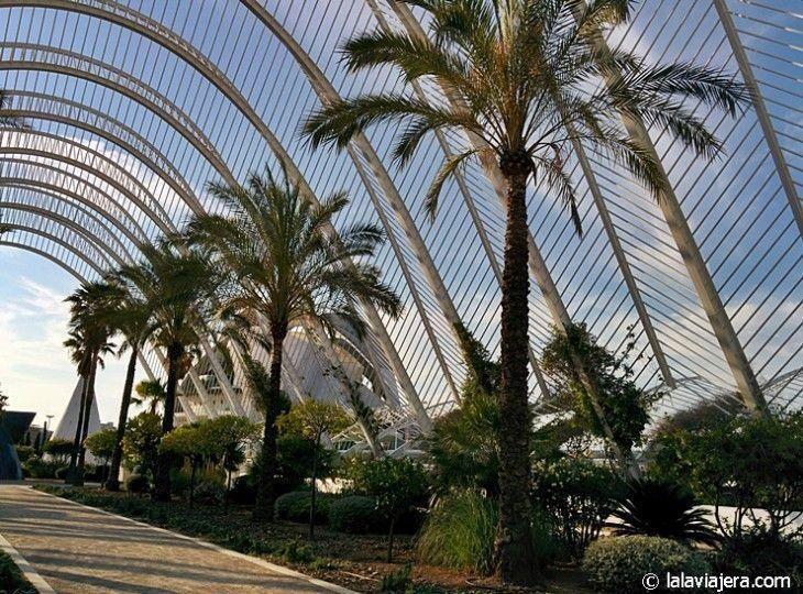 Jardines del Umbracle, Ciudad de las Artes y las Ciencias