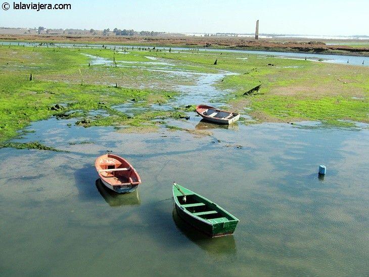 Descubre Huelva: Marismas de Isla Cristina