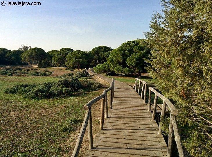 Descubre Huelva: Parque Natural de Doñana