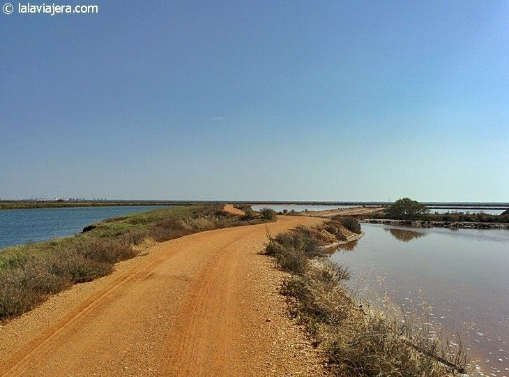 Descubre Huelva: Parque Natural Marismas del Odiel