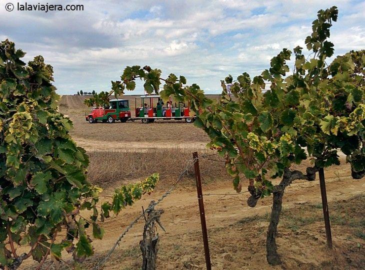 Actividades de enoturismo de la Ruta del vino del Condado de Huelva