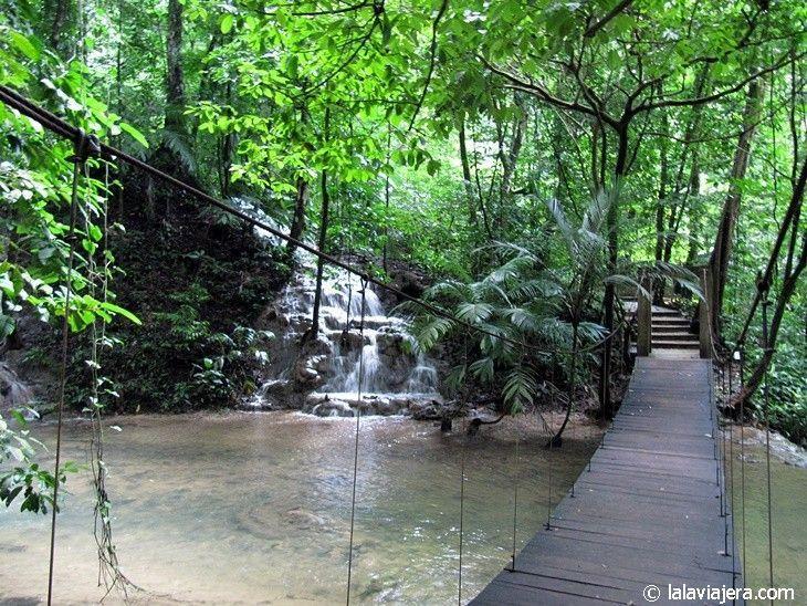 Sendero Eco-arqueológico del río Otolum, en Palenque