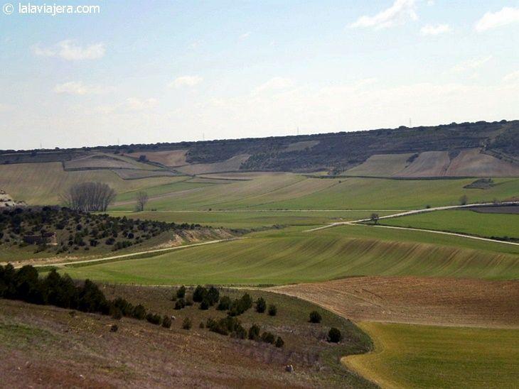 Montes Torozos desde la muralla de Urueña