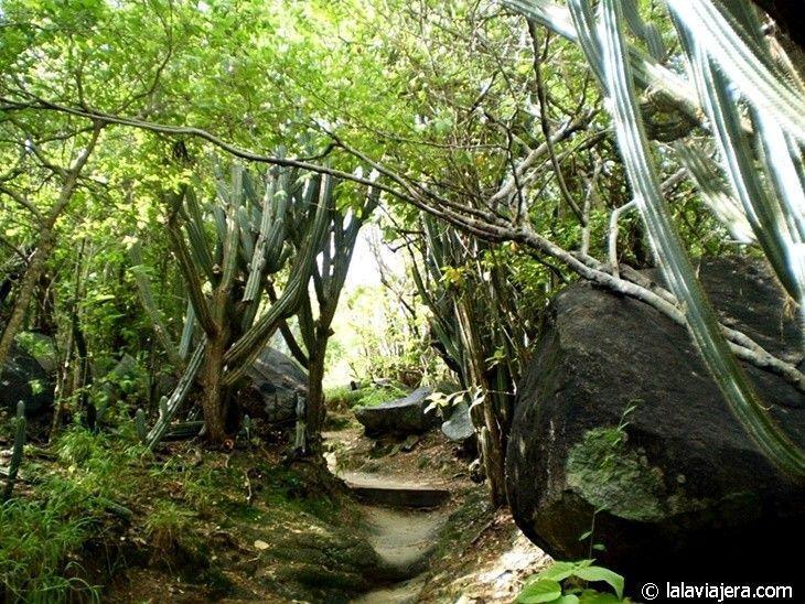 Senderos en el Parque Nacional Baths de Virgin Gorda