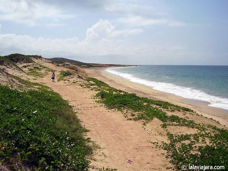 Playa de La Restinga, Caribe venezolano