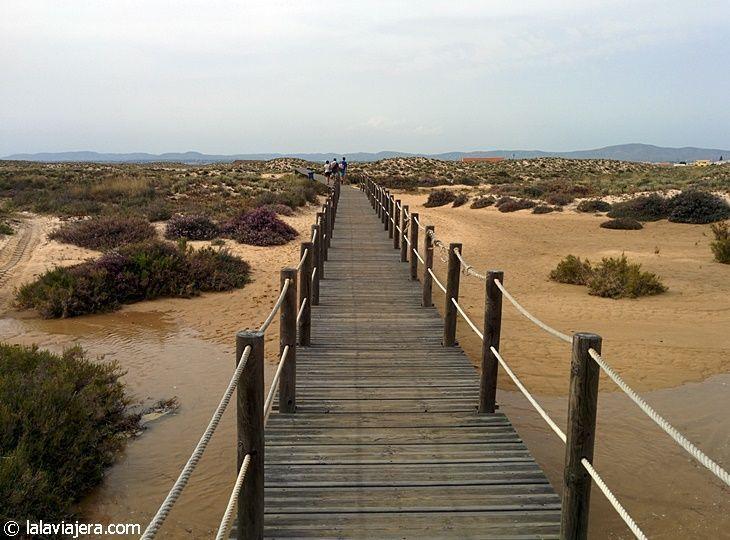Acceso a la playa virgen de Culatra