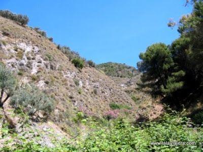 Parque Natural Sierras Tejeda Almijara Alhama