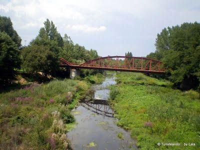 puente hierro rio tuerto, la baneza