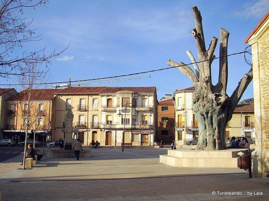 plaza negrillon bonar