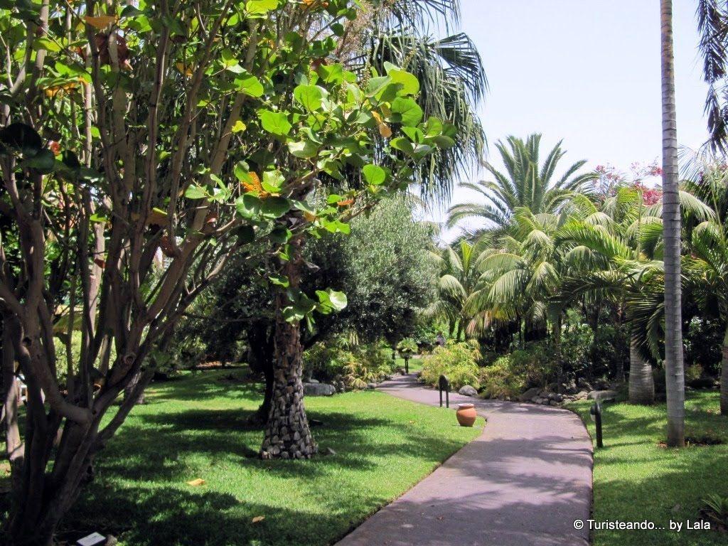 Turismo astronomico en la palma lala viajera for Jardines de la hacienda