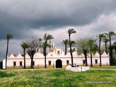 Palacio Rey, Coto Donana