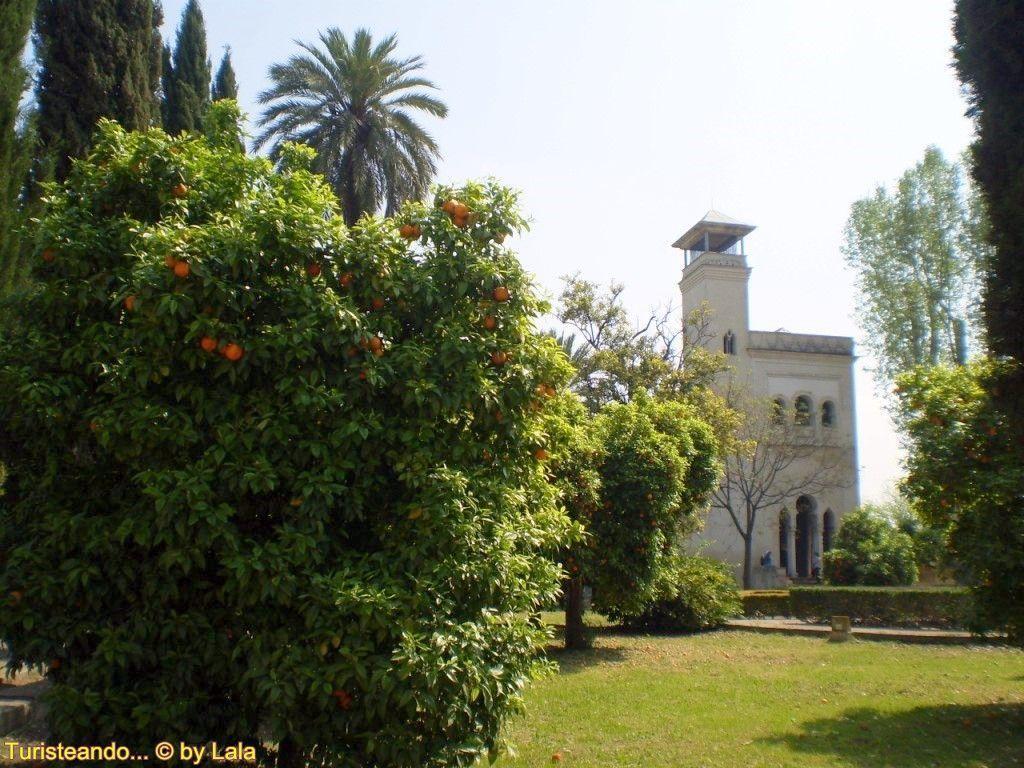 Monasterio de la cartuja de sevilla lala viajera for Jardines de la cartuja