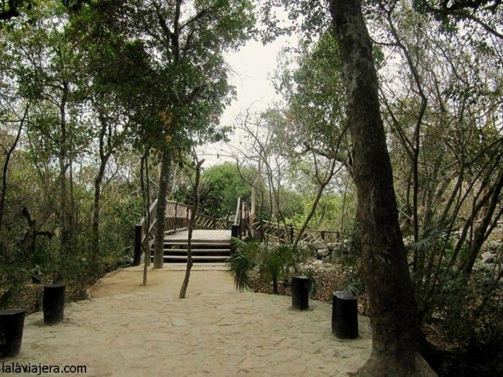 Senderos para explorar la Reserva de la Biosfera Sian Ka'an
