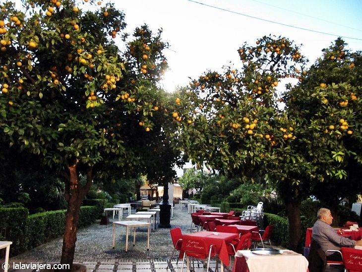 Plaza de los Naranjos, Marbella