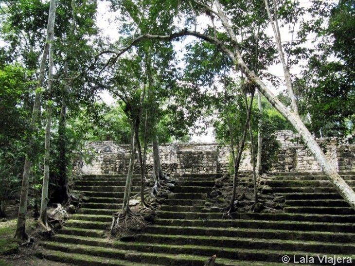 Ruta Maya Calakmul
