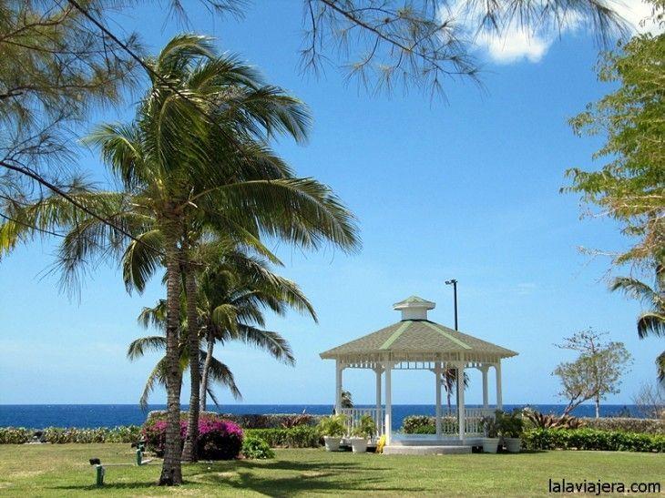 Jardines de la plantación Pedro Castle, Gran Caimán