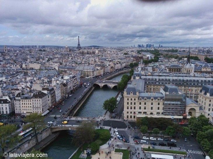 El Sena desde la Torre de la Catedral de Notre Dame