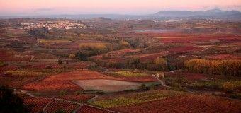 5 planes para disfrutar de un otoño rural en España