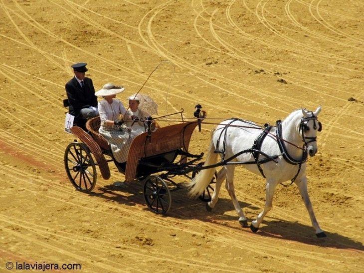 Desfile de Enganches y Carruajes en La Real Maestranza de Sevilla