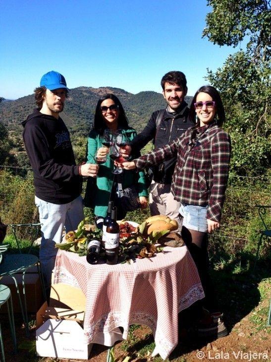 Vino Bienteveo, únicos viñedos de la Sierra de Aracena