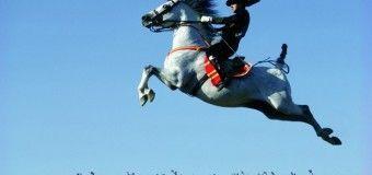 Jerez: tierra del caballo, el toro y el sherry
