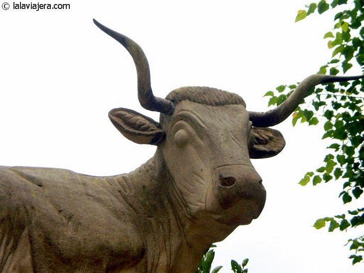 Vaca tudanca, raza autóctona de Cantabria