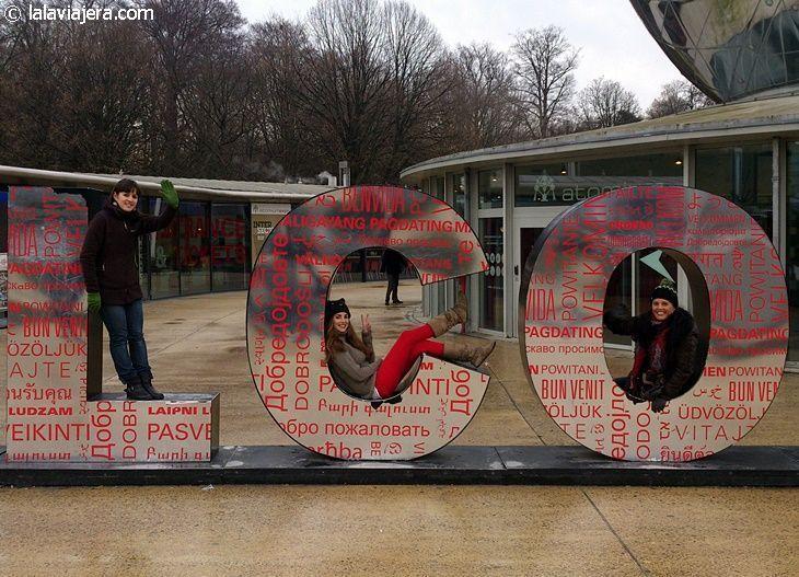 organizar una escapada a Bélgica