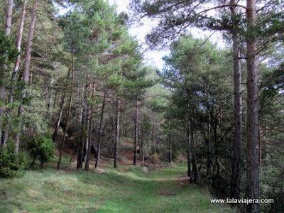 Senderismo Alt Bergueda, Pirineos Barcelona