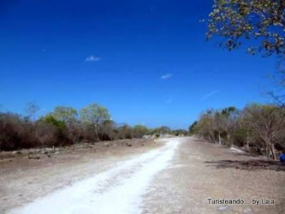 sacbe ciudad maya Dzibilchaltun, yucatan